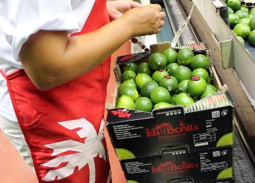 Trabajador de Isla Bonita etiquetando limas