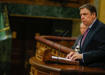Luis Planas, en el Congreso