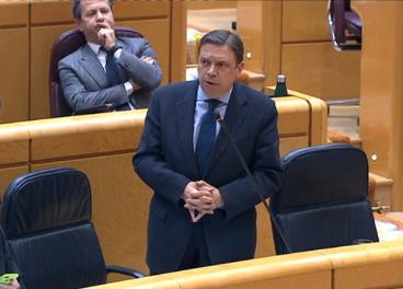 El ministro Luis Planas en el Senado