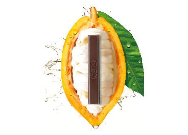 Chocolate de Nestlé con el fruto del cacao
