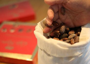 Cacao de Nestlé