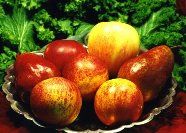 Frutas de kilómetro cero