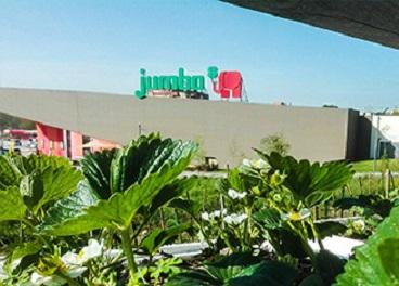 Tienda de Jumbo (Auchan Retail) en Portugal