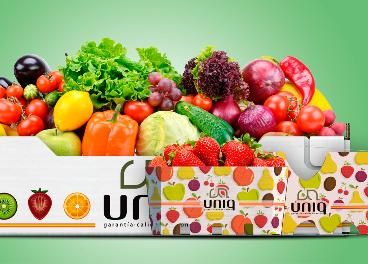 Envases de cartón para frutas y verduras