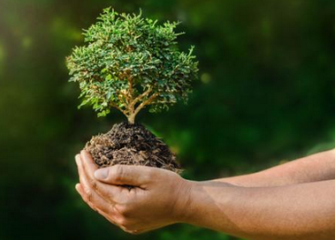 Ecoembes promueve la economía circular