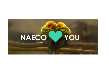 Naeco Loves you