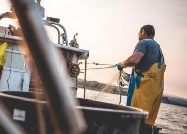 Pescador en Lonja