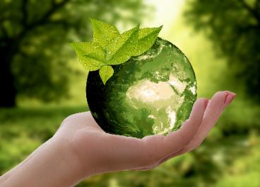 Iniciativa sostenible en cosmética
