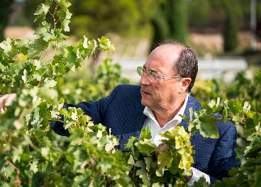 Carlos Moro en el viñedo
