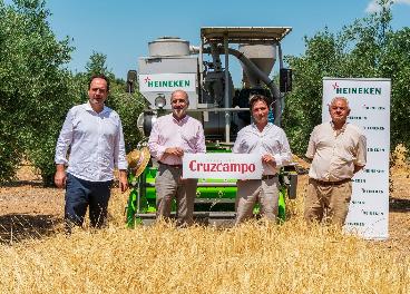 Proyecto Olivo de Cruzcampo (Heineken)