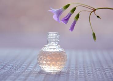Sector online de perfumes