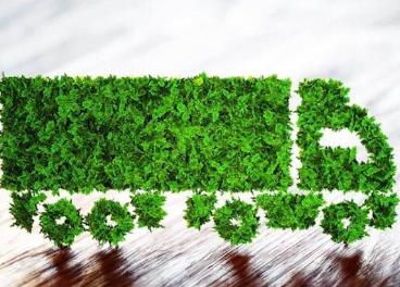 Lean & Green bate su récord de crecimiento