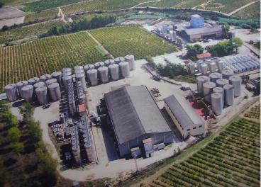 Bodegas de Vins Font
